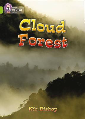 The Cloud Forest - pr_246115
