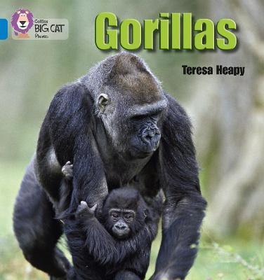Gorillas - pr_18869