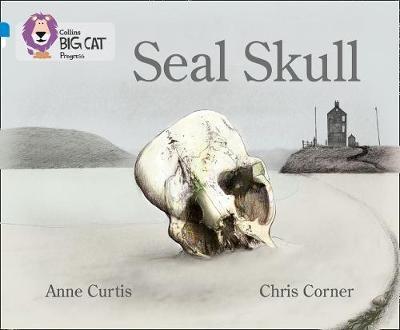 Seal Skull -