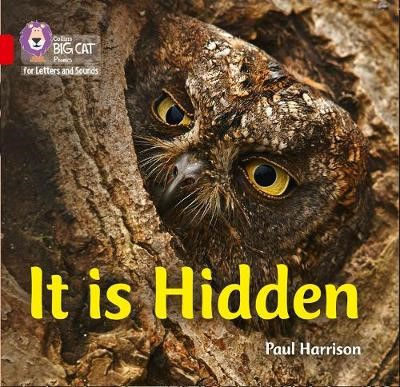 It is Hidden - pr_18692
