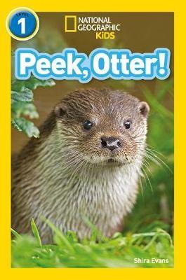 Peek, Otter! -