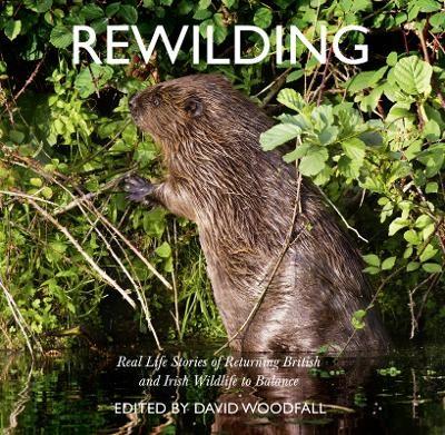 Rewilding -