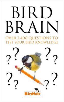 Bird Brain -