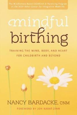Mindful Birthing - pr_294019
