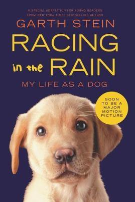 Racing in the Rain -