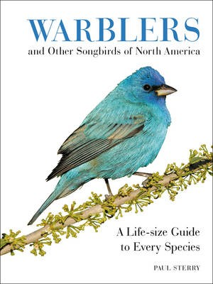 Warblers and Other Songbirds of North America -