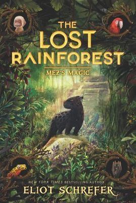 The Lost Rainforest #1: Mez's Magic -