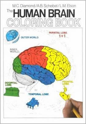 The Human Brain Coloring Book -