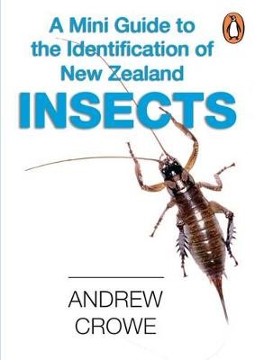 A Mini Guide to the Identification of New Zealand Insects - pr_1869132