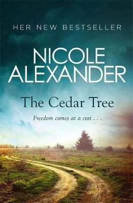 The Cedar Tree -
