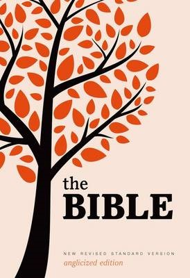 New Revised Standard Version Bible: Popular Text Edition - pr_409484