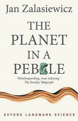 The Planet in a Pebble -