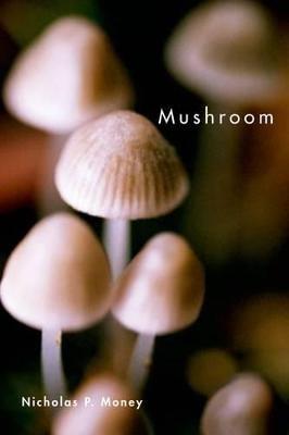 Mushroom -