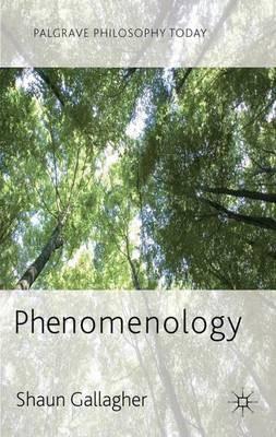 Phenomenology - pr_20603