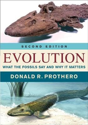 Evolution - pr_302218