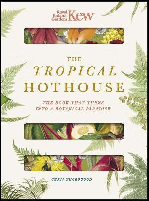 Royal Botanic Gardens Kew - The Tropical Hothouse -