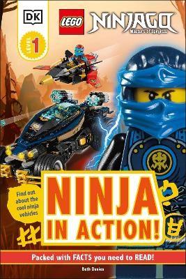 LEGO NINJAGO Ninja in Action! - pr_60525