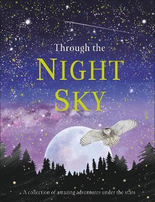 Through the Night Sky -