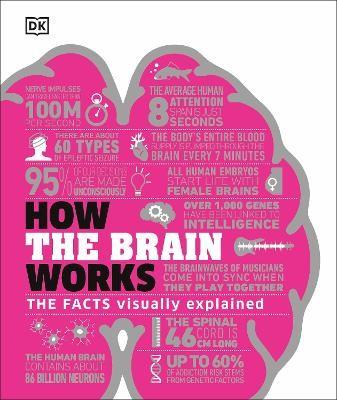 How the Brain Works - pr_1746560