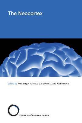 The Neocortex -