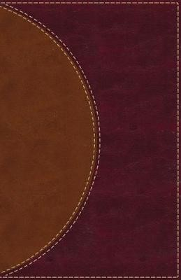 Amplified Reading Bible, Leathersoft, Brown, Thumb Indexed - pr_412187
