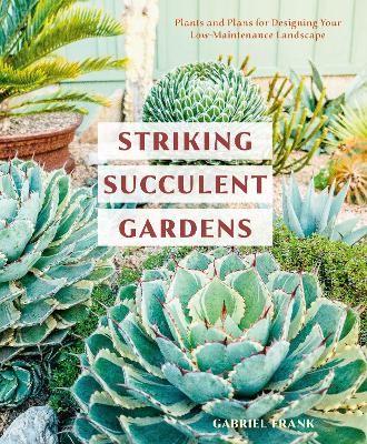 Striking Succulent Gardens -