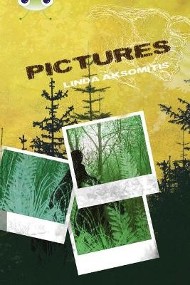 Bug Club Independent Fiction Year 5 Blue B Pictures -