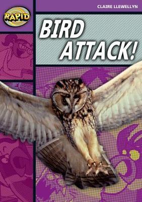 Rapid Reading: Bird Attack! (Stage 1, Level B) -