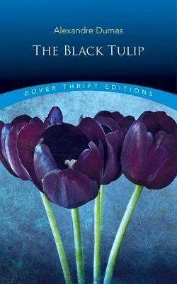Black Tulip -