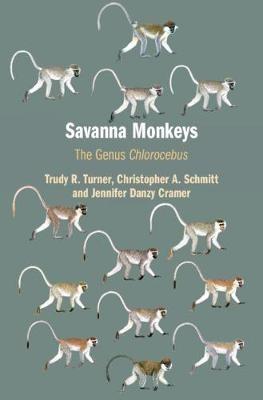 Savanna Monkeys - pr_287815