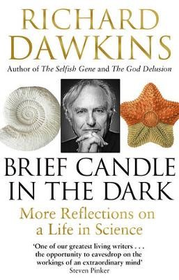 Brief Candle in the Dark -