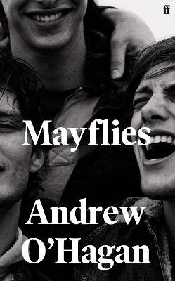 Mayflies - pr_1807883