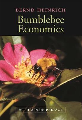 Bumblebee Economics - pr_1832539