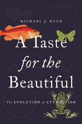 A Taste for the Beautiful -