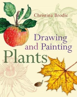 Drawing and Painting Plants - pr_383576