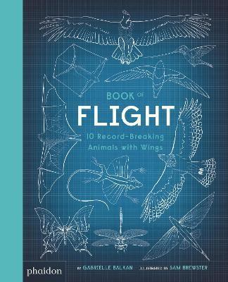 Book of Flight - pr_328333
