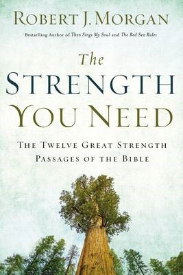 The Strength You Need - pr_1705361