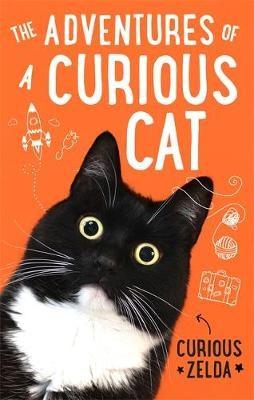 The Adventures of a Curious Cat - pr_1838744