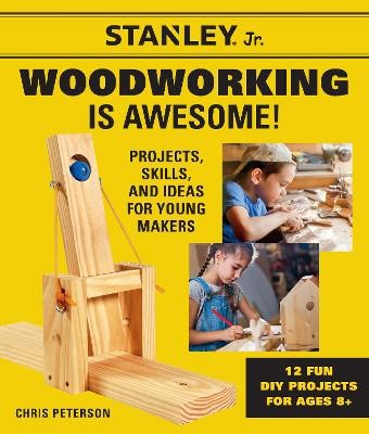 Stanley Jr. Woodworking is Awesome - pr_1779681