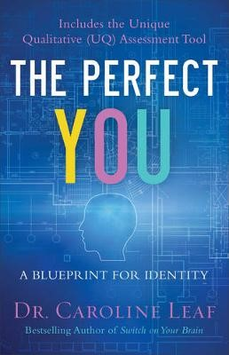 The Perfect You - pr_294992