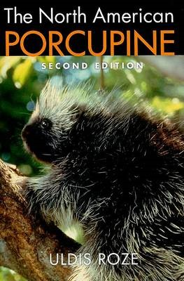 The North American Porcupine - pr_1750091