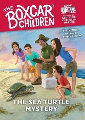 The Sea Turtle Mystery -