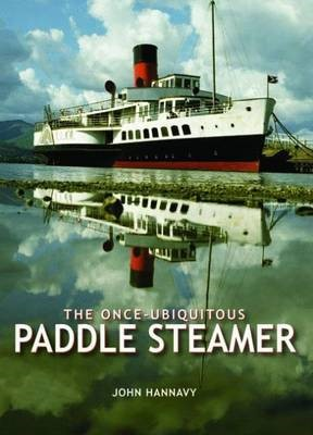 The Once-Ubiquitous Paddle Steamer -