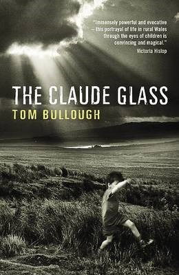 The Claude Glass -