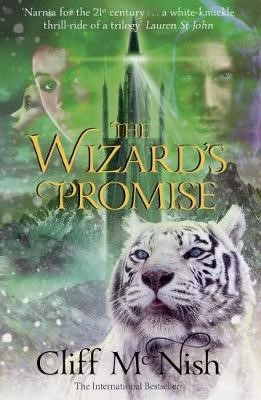 The Wizard's Promise -