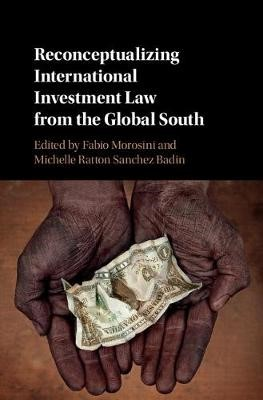 Reconceptualizing International Investment Law from the Global South - pr_30281