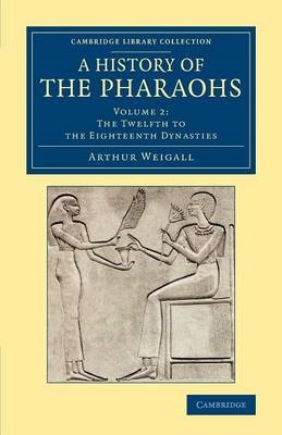 A History of the Pharaohs - pr_20443