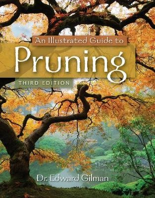 An Illustrated Guide to Pruning - pr_130590