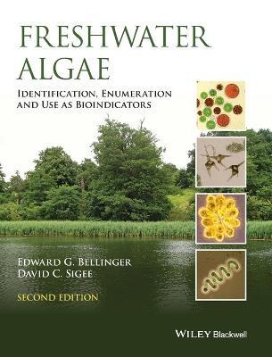 Freshwater Algae - pr_332231