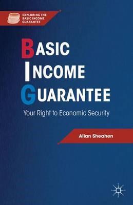 Basic Income Guarantee - pr_261195